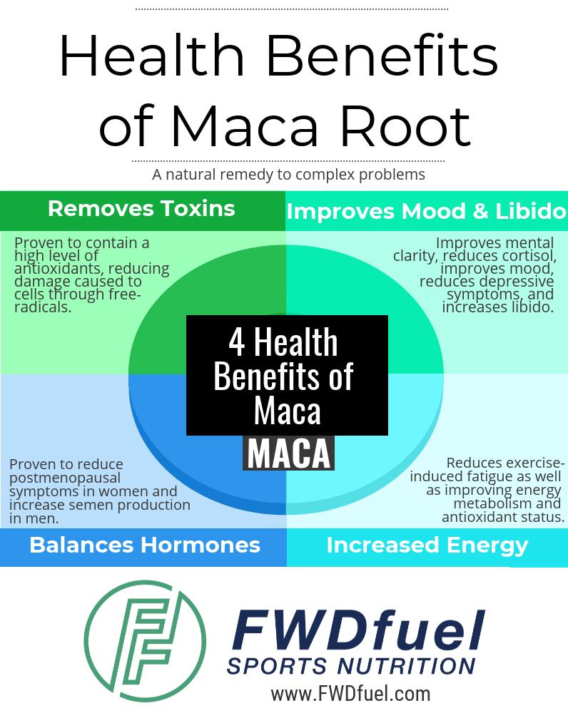 Health Benefits of Maca Root Infograph