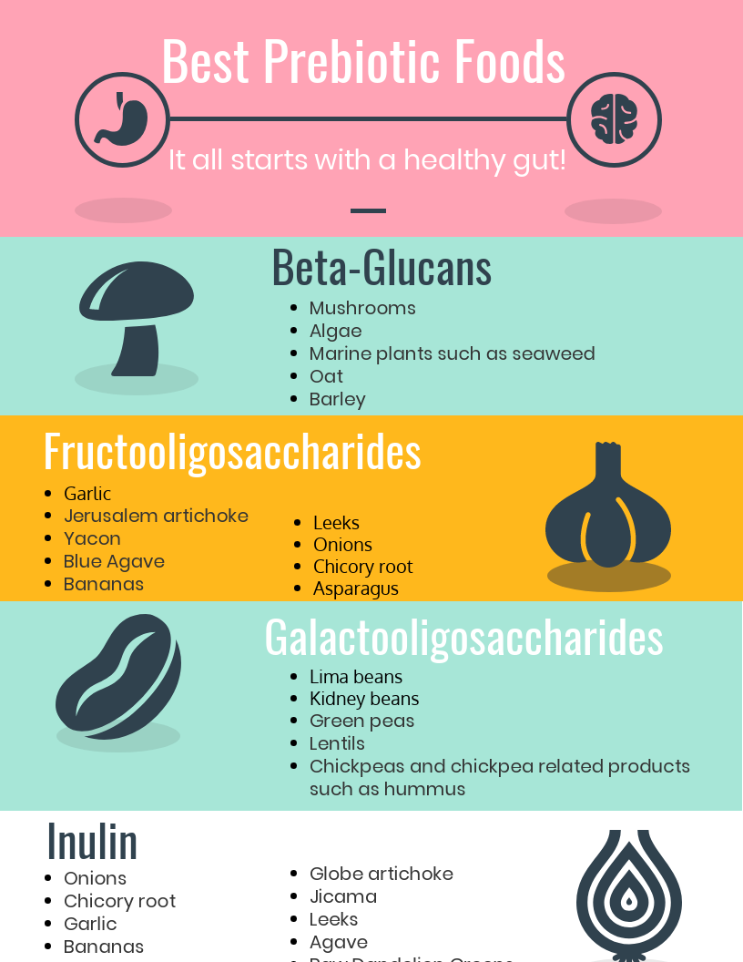 infographic prebiotic food list