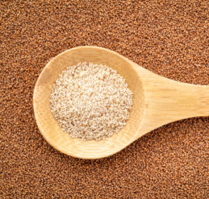 Ivory Teff on a wooden spoon on top of brown Teff, a gluten free grain.