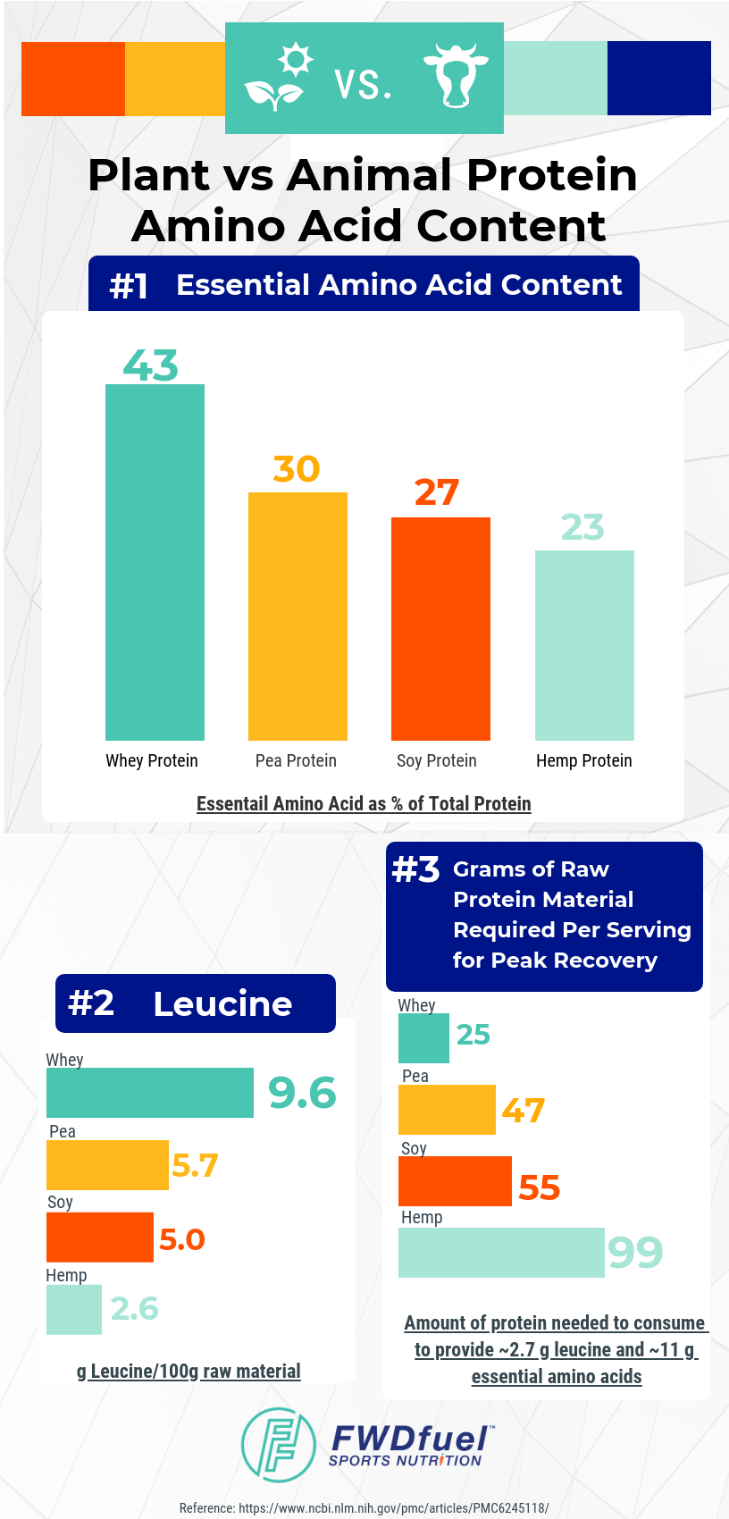 Infographic comparing the amino acid content of plant protein vs animal protein.
