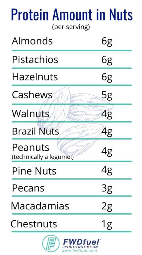 Protein in nuts chart listing grams of protein per serving for each kind of nut.